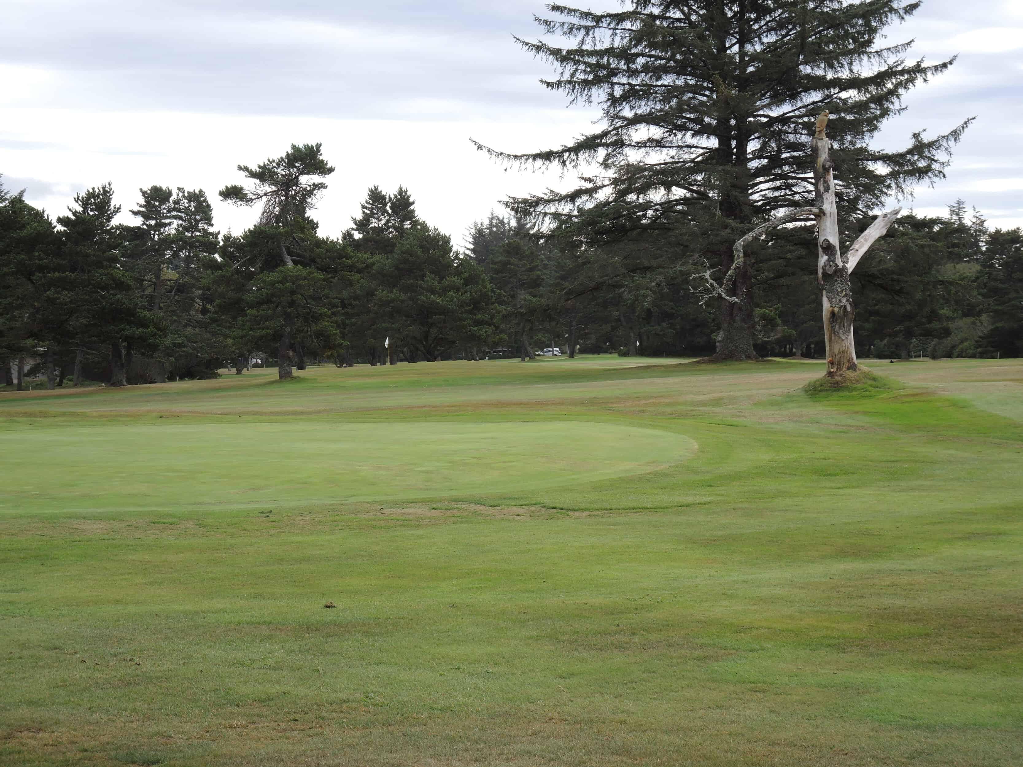 Agate Beach golf Newport